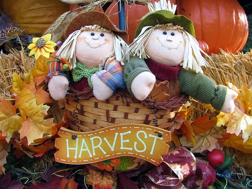 harvest festival street food business
