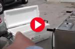 hot dog vendors give video tour