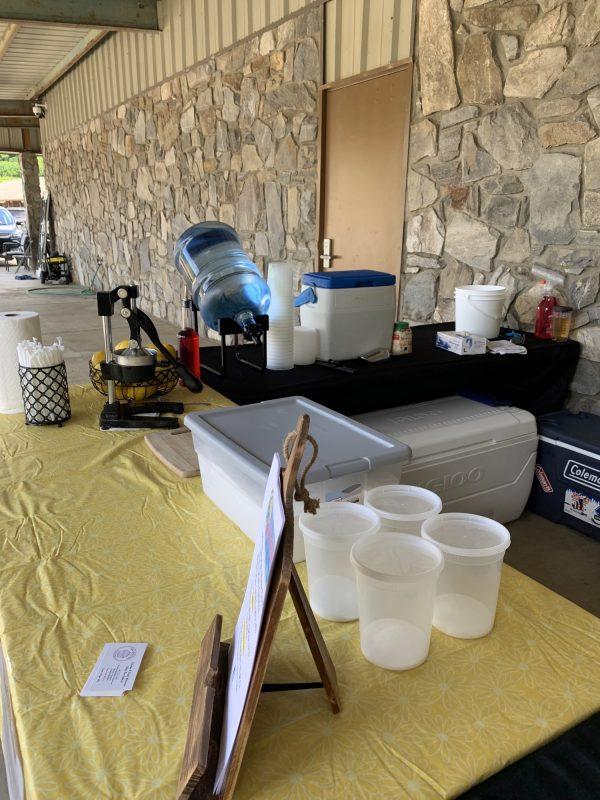 lemonade vendor table